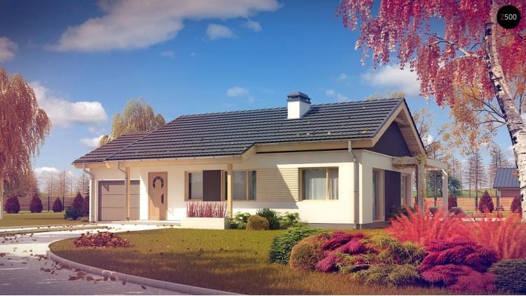 Проект небольшого одноэтажного дома с большой площадью остекления в гостиной - Z259