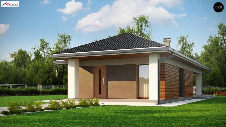 Проект Z366 Одноэтажный дом в традиционном стиле с просторной гостиной  Проекты домов и гаражей