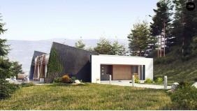 Функциональный одноэтажный дом исключительного современного дизайна - ZX106